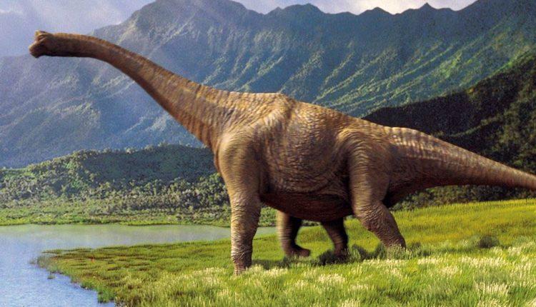 Mokslininkai Egipte atrado su Europa susijusį dinozaurą